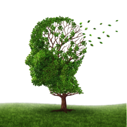 Alzheimers featured image